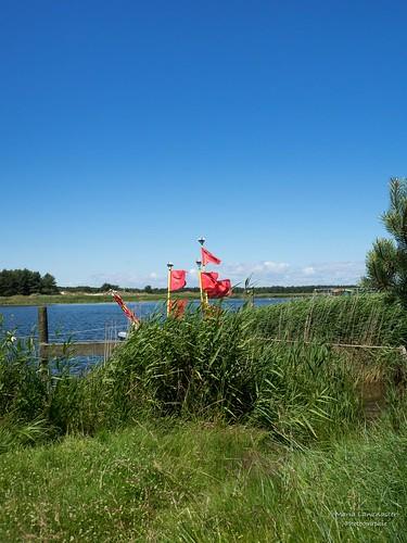 Darß - Ostsee