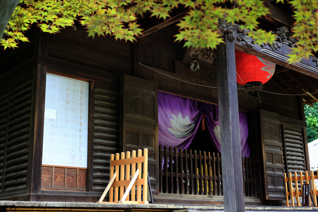Maple & Heirin-ji Temple