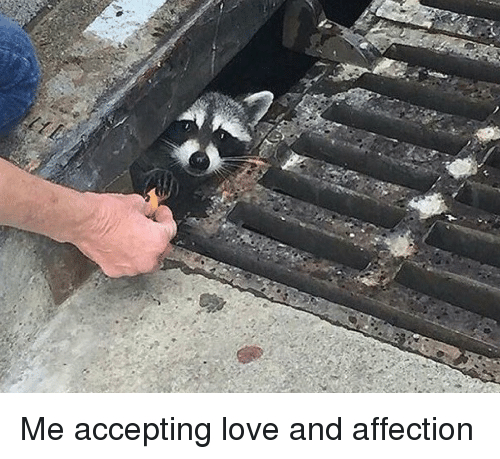 me-accepting-love-and-affection-3741528