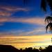 Palm Sunset por sarider1