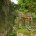 L2017_4540 - Dewstow House  & Grottoes, Caerwent