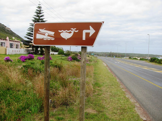 Whale Route Signpost