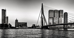 Rotterdam Zuid