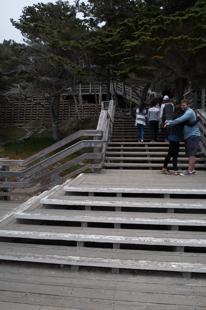Steps that lead down to Lone Cypess Lookout