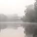 Foggy by Chris (Midland05)
