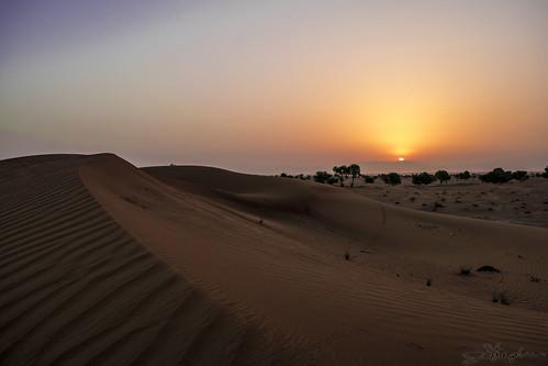 e611 desert uae sunrise sand mountains morning nature ummalquwain unitedarabemirates exit95 landscape