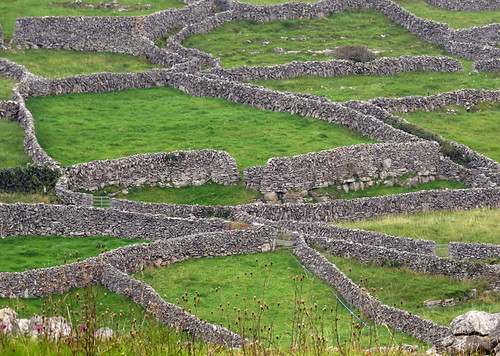 Endless stone fences on the Aran Island of Inisheer in Ireland