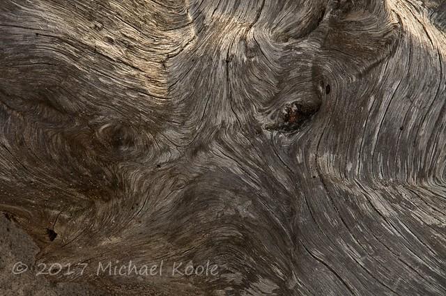 Wood Grain - Face 02