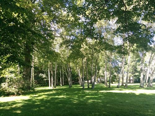 Garden of Fanningbank #pei #princeedwardisland #charlottetown #fanningbank #garden