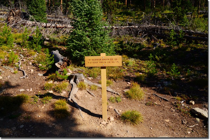 Herman Gulch Trail & Watrous Gulch Trail junction 2