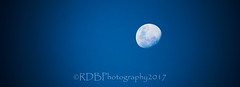 Waxing Blue Moon 1