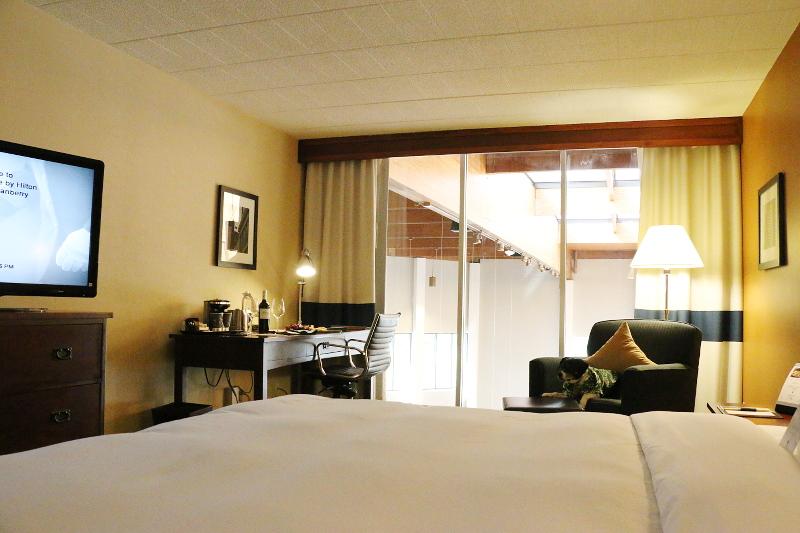 doubletree-hilton-cranberry-hotel-room-3