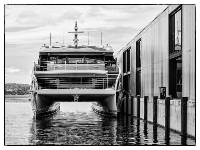 Mona Ferry