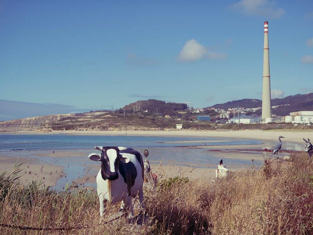 Cosas extrañas que te encuentras por Galicia. #curious #Arteixo #olympusomd10markii #olympusomd #photography #beach