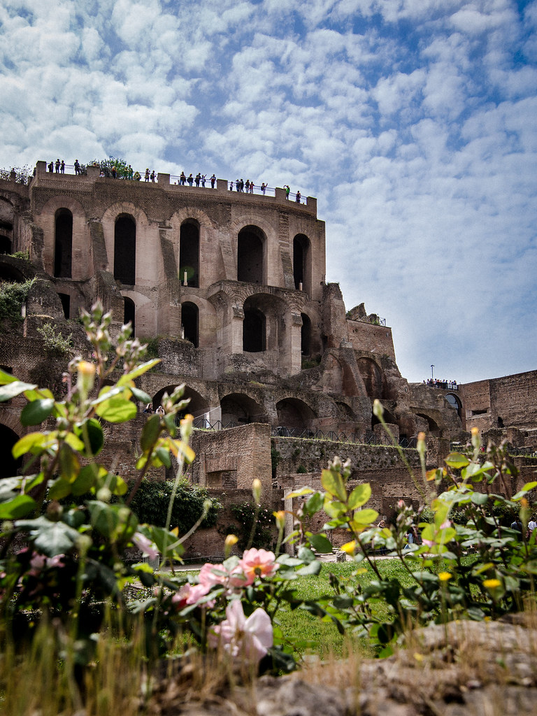 Rome – Colosseum  + The Forum