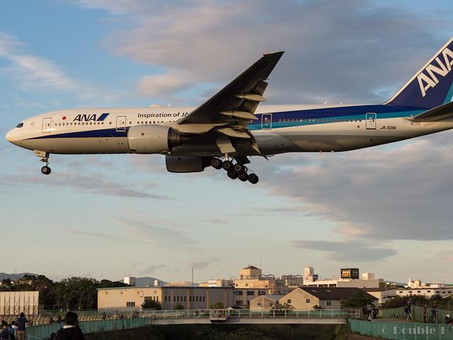 Itami Airport 2017.9.28 (3) JA708A / ANA's B777-200
