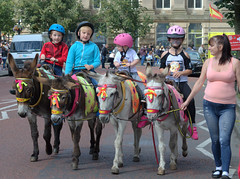 Donkey ride in Bolton
