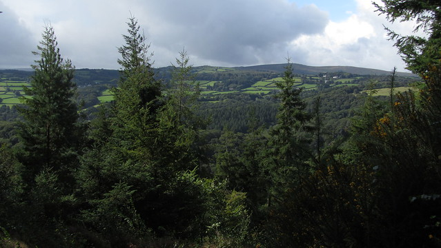The view from Ausewell Woods