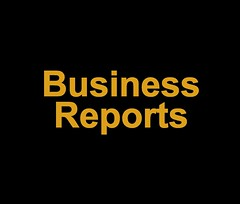 Business Reports copy