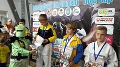 Международный турнир WKF «International Dojo Cup»29