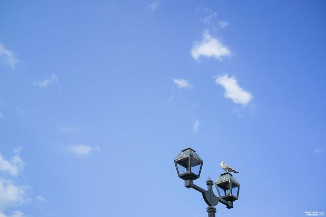 小樽運河 煤氣燈
