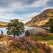Happy valley.... by Einir Wyn Leigh