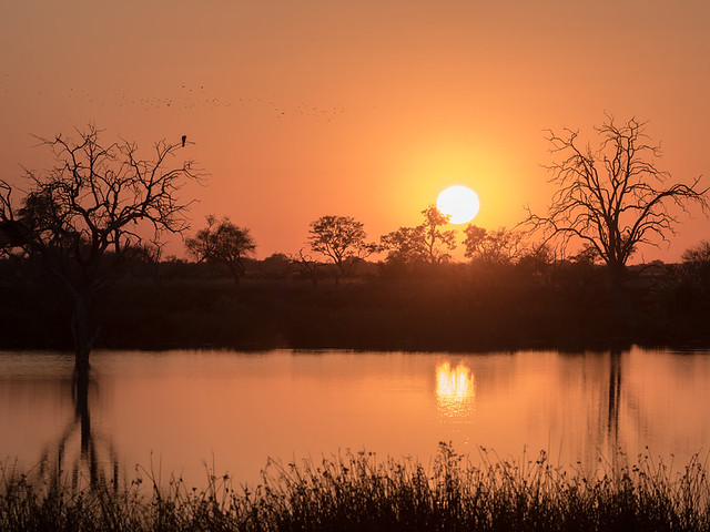 Third Bridge Sunrise, Okavango