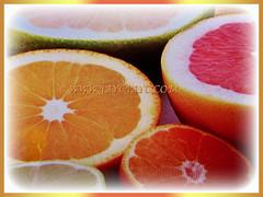 Varying coloured fruits of Citrus x paradisi (Grapefruit, Paradise Citrus), 22 Aug 2017