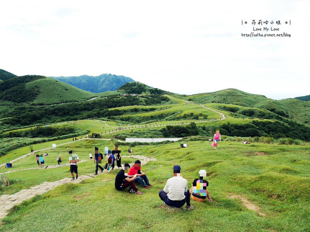 陽明山一日遊行程推薦遊記擎天崗 (1)