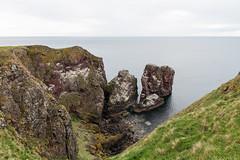 St. Abb's Head, Scotland