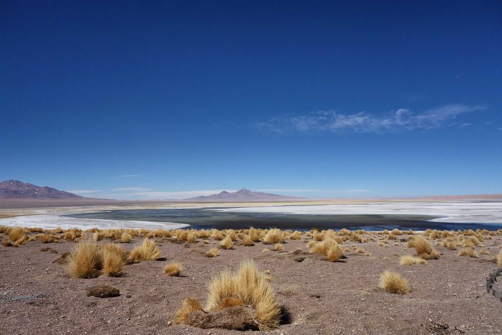 San Pedro Atacama - Salar de Tara 2