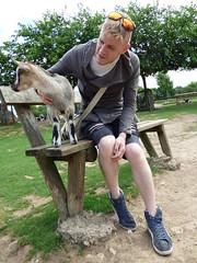 Cerza Zoo - feeding goats (5)
