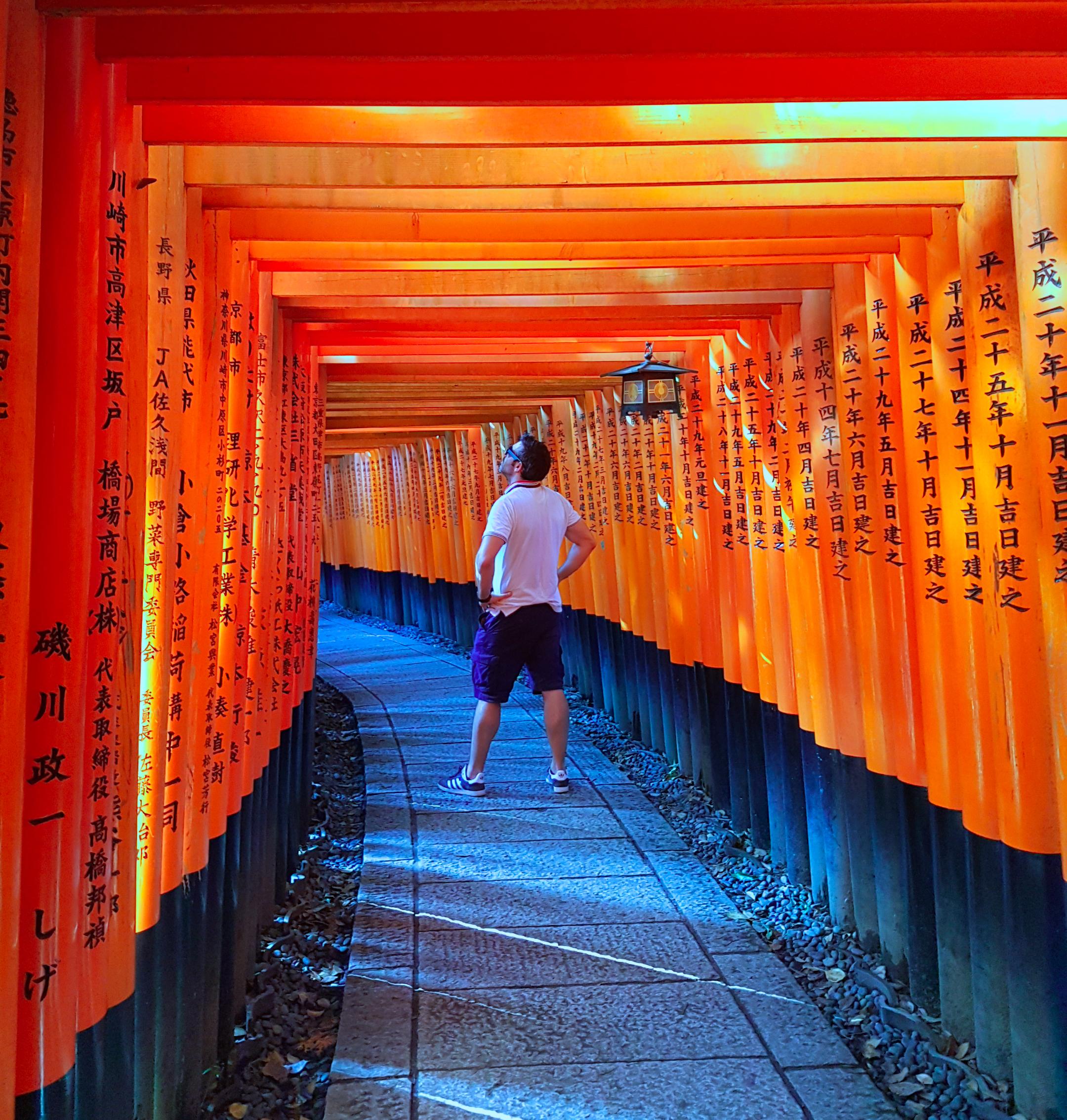 Inari Shrine Torii - Kyoto / Kioto - Viajar a Japón - ruta por Japón en dos semanas ruta por japón en dos semanas - 36904412365 ae61240b2c o - Nuestra Ruta por Japón en dos semanas (Diario de Viaje a Japón)