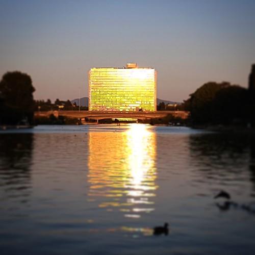 Riflessi di tramonto, laghetto dell'EUR