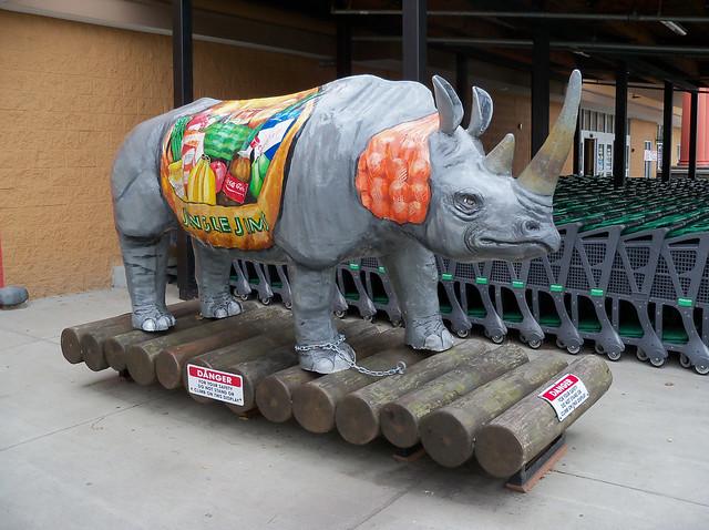 OH Cincinnati - Jungle Jim's Rhino