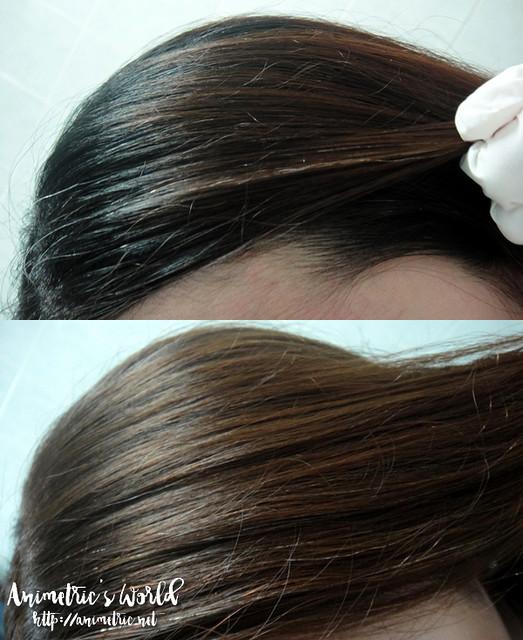 Palty Foam Pack Hair Color