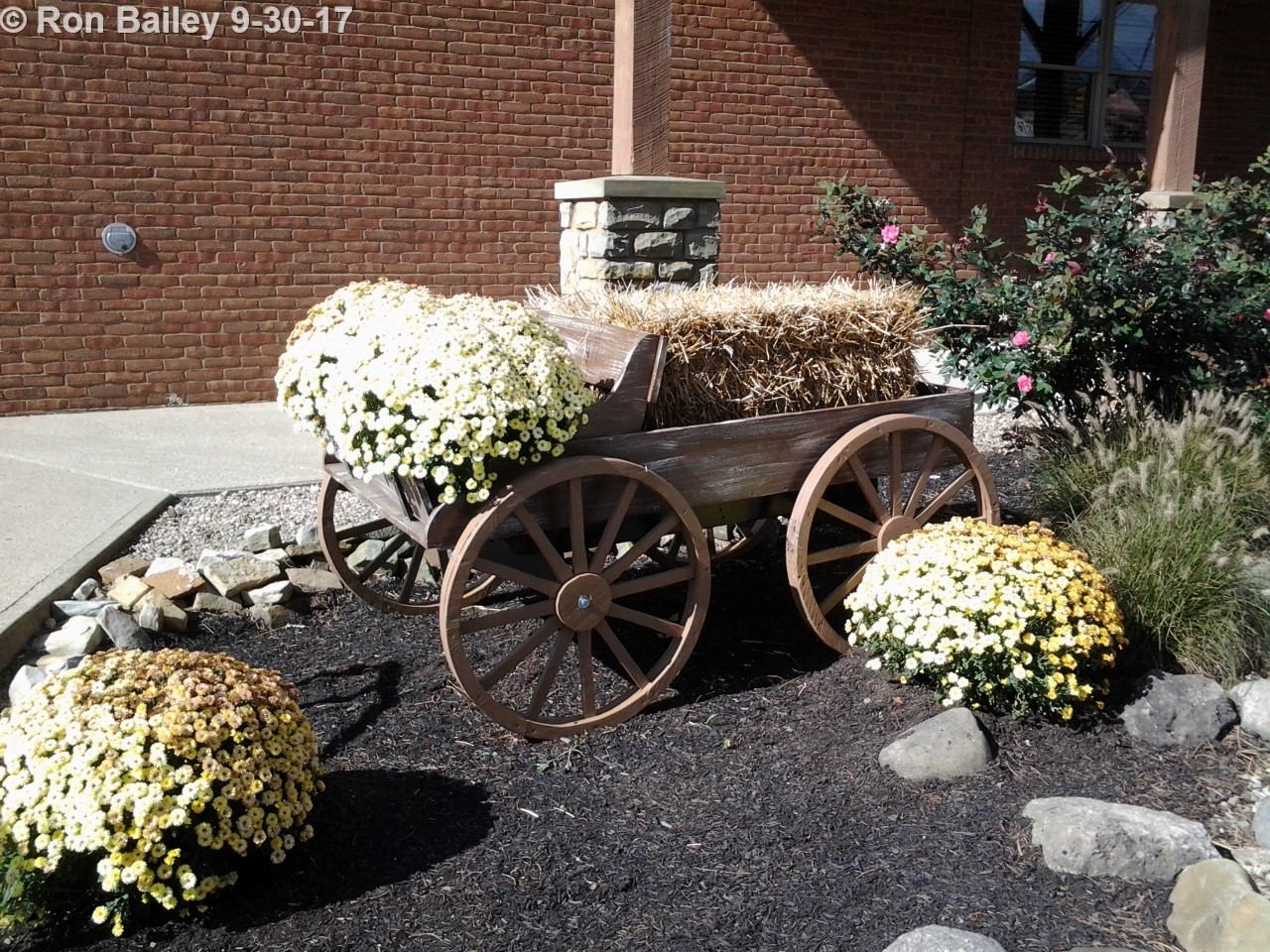 Hay Wagon 9-30-2017 11-10-31 AM