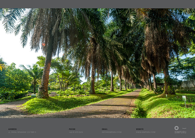 portfolio interior16.jpg