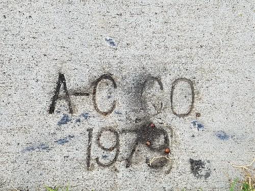 Sidewalk Date Marker  - A-C Co.  - 1979