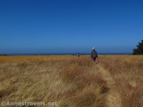 Walking the headlands in Point Arena-Stornetta National Monument, California
