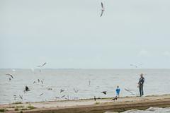 Feeding Birds | Nida, Lituania