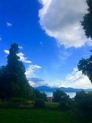 Lac Léman depuis le Parc de l'Hermitage