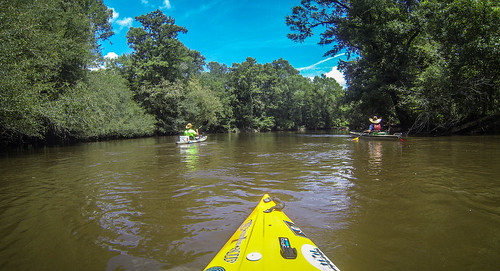 Lynches River with Lowcountry Unfiltered-44