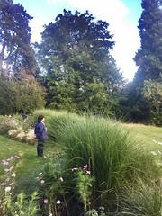 Admirer la nature