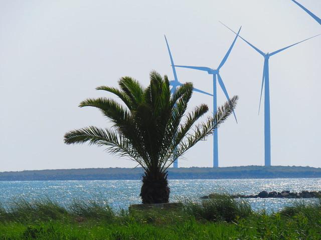 Palmestranden /Palm Beach( Frederikshavn Danmark..