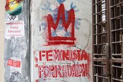 Feminist Revolution (6294)