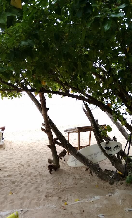 Surf board at Mirissa Beach in Sri Lanka
