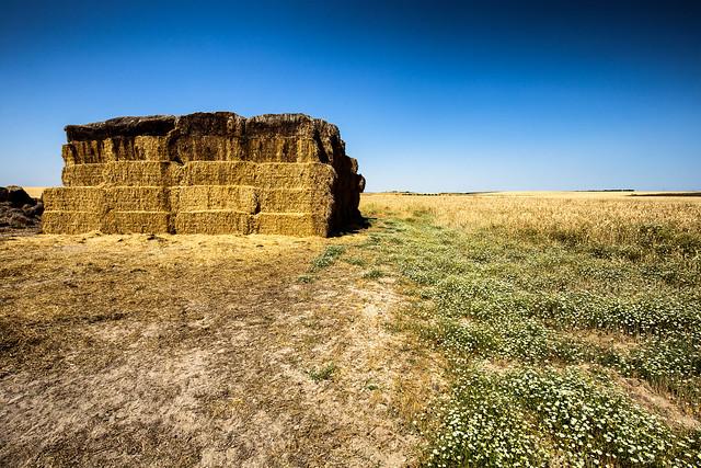 Landscape of Extremadura / Spain