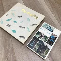 昨日、仙台の熊谷書店さんで70%オフ購入した本。「青いけしの国」という本は、花の本ではなくチョウの本!