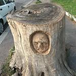 Tree stump carving in Rome - https://www.flickr.com/people/18576376@N00/